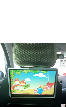 Universal DVD Rear Entertainment System